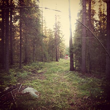 Norrbotten i oktober 2
