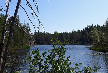 Paradissjön i Västerbotten 1