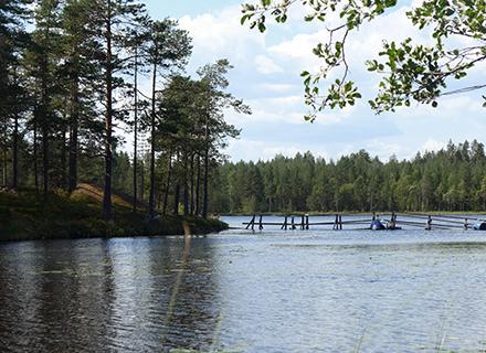Paradissjön i Västerbotten 2
