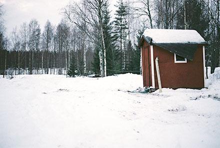 Skogskoja