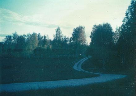Sommarens långa skuggor