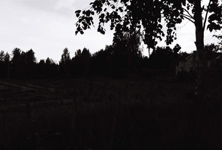 Mörkögda augustinatt